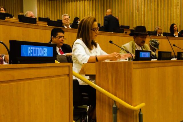 Abogan por eliminar Leyes de Cabotaje para Puerto Rico en la ONU